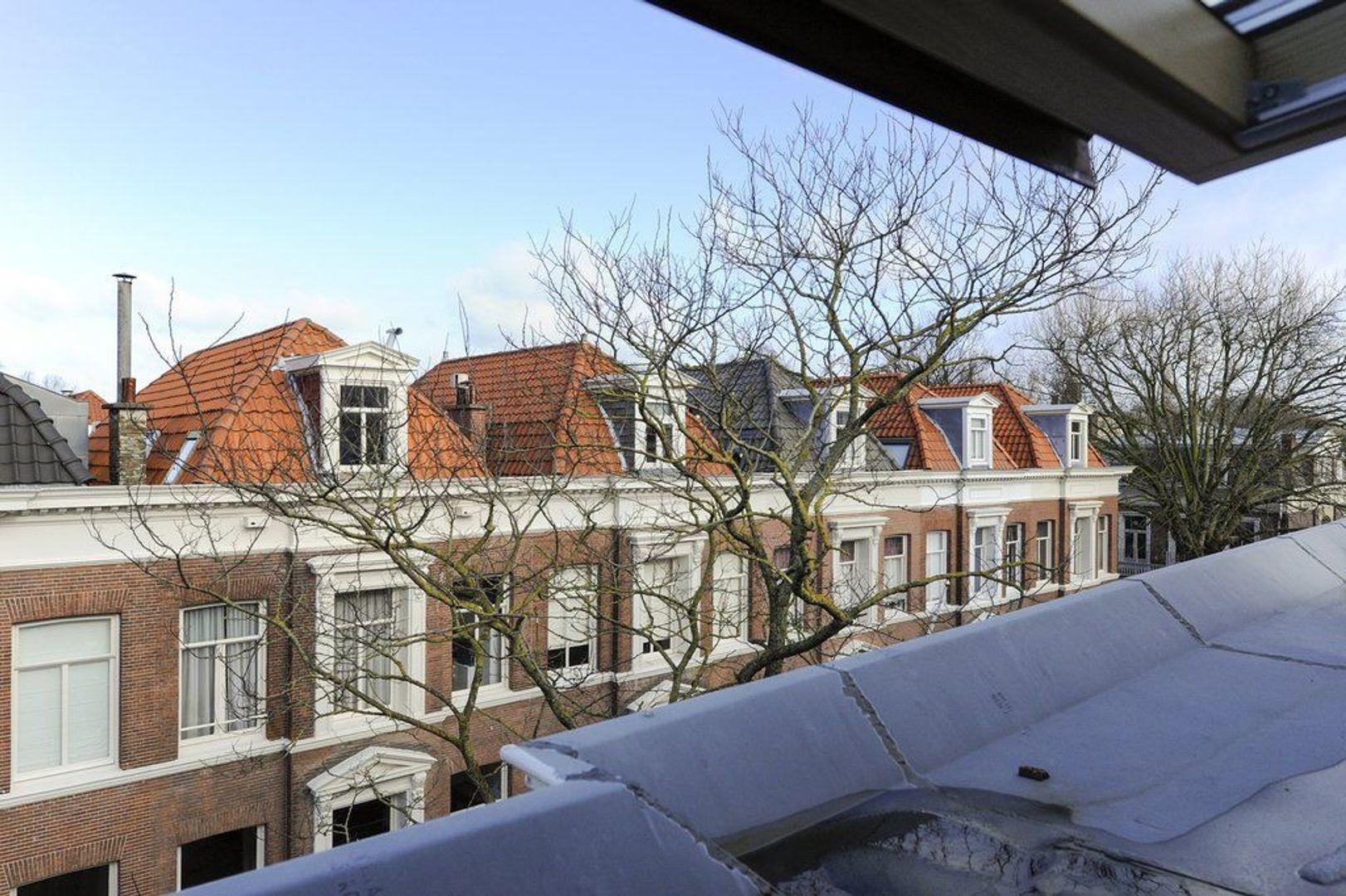 Riouwstraat 179, Den Haag foto-38 blur