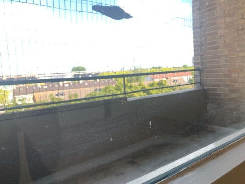 Willem Royaardsstraat 70, Rijswijk foto-17 blur
