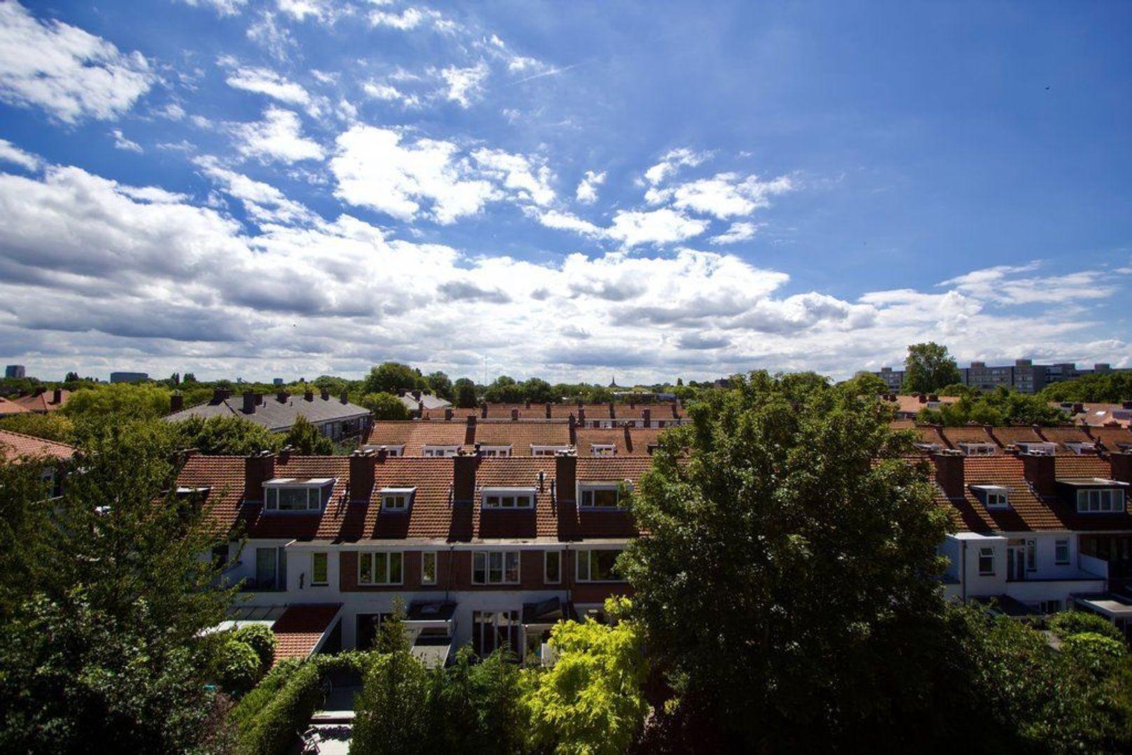 Laan van Meerdervoort 1636, Den Haag foto-24 blur