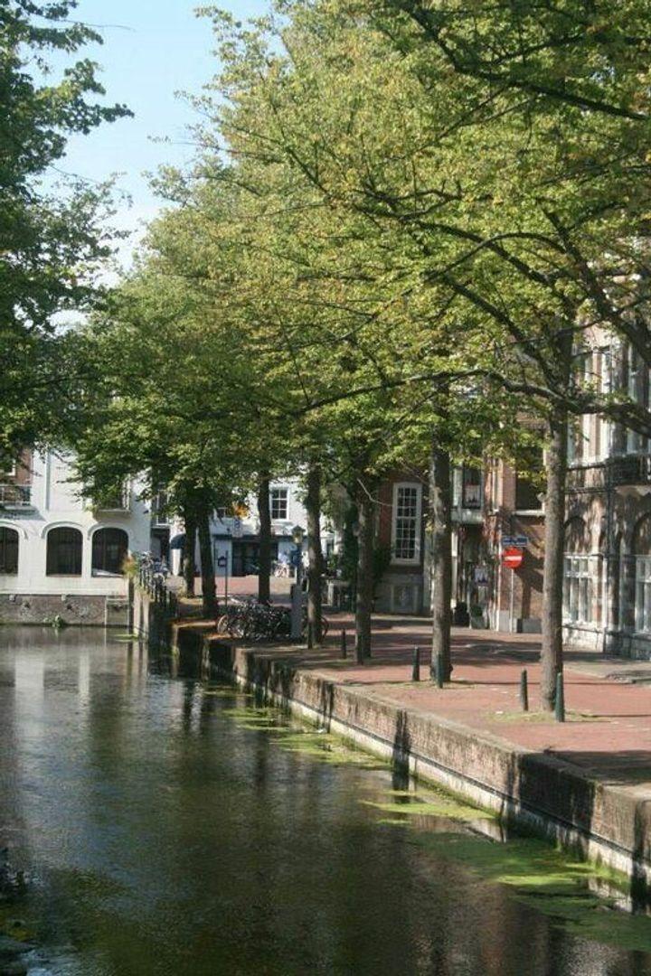 Houtweg 50, Den Haag foto-22 blur