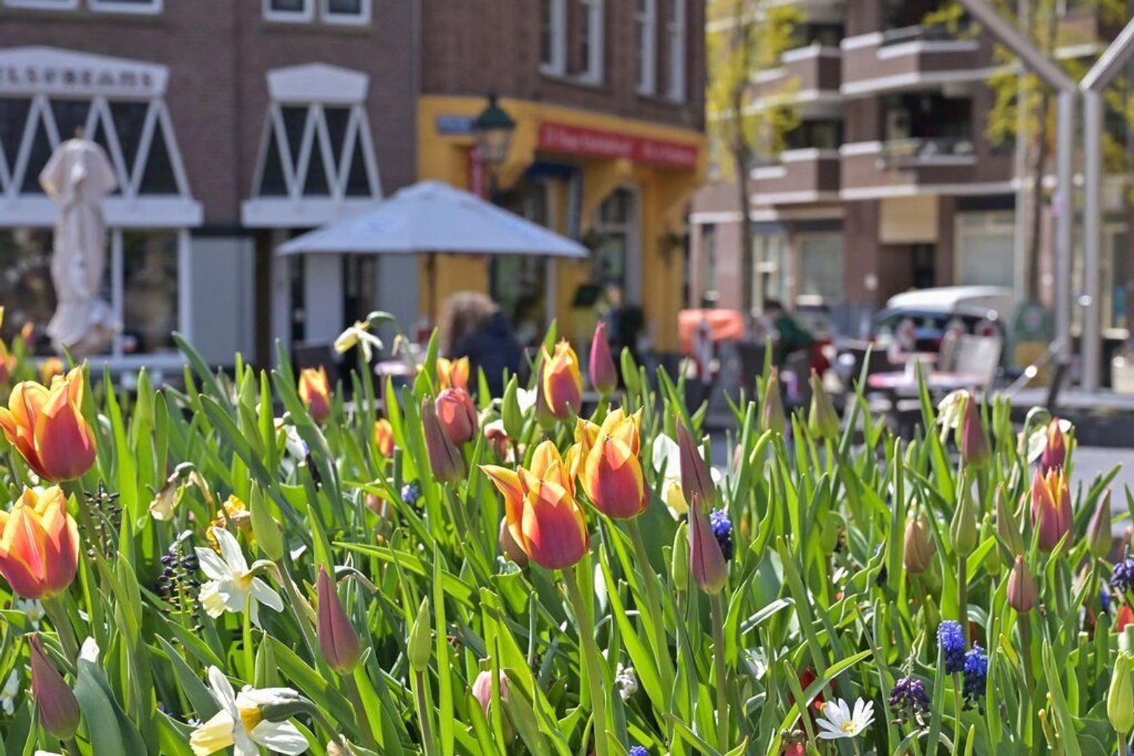 Anna Paulownastraat 30 2, Den Haag foto-25 blur