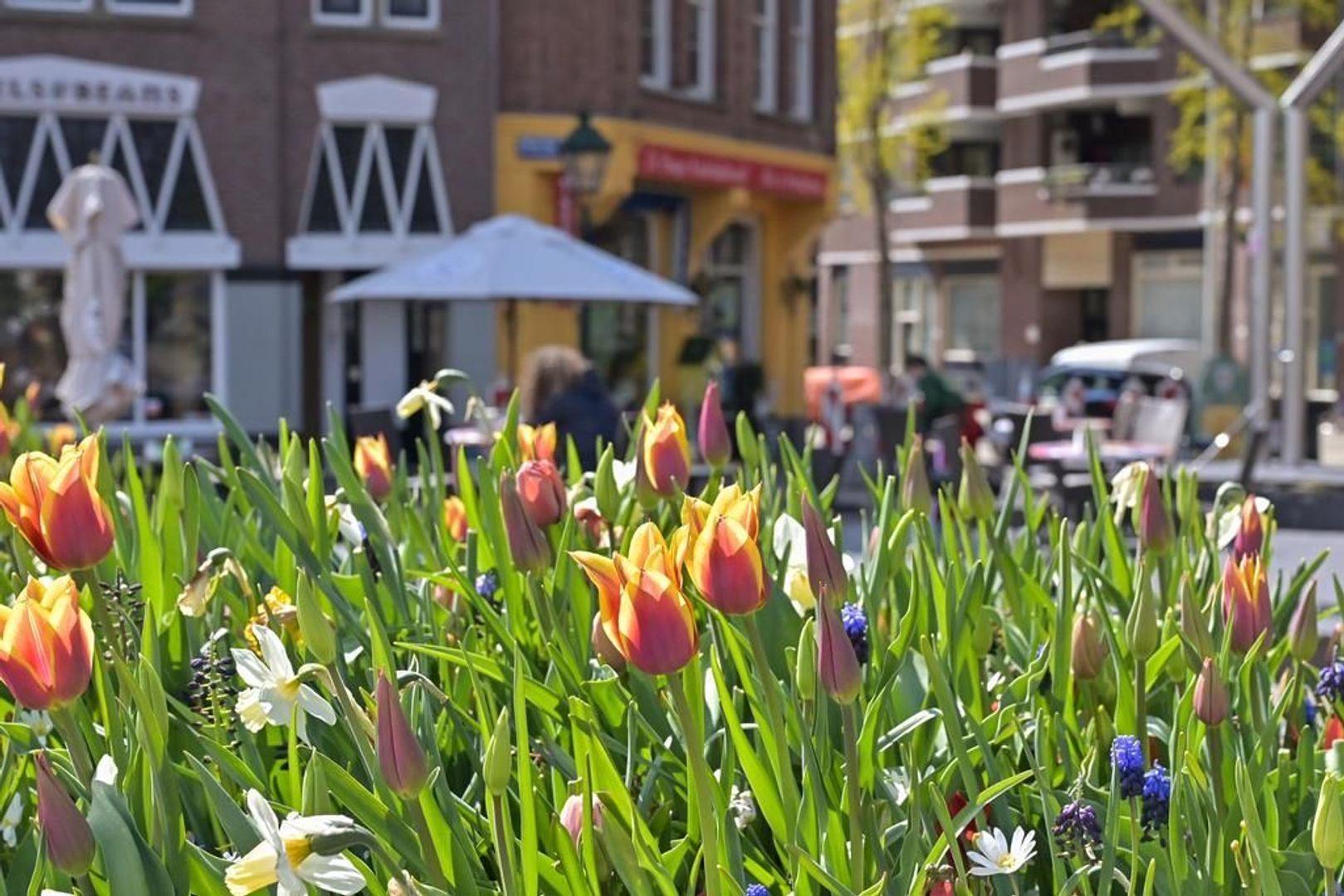 Anna Paulownastraat 30 3, Den Haag foto-28 blur