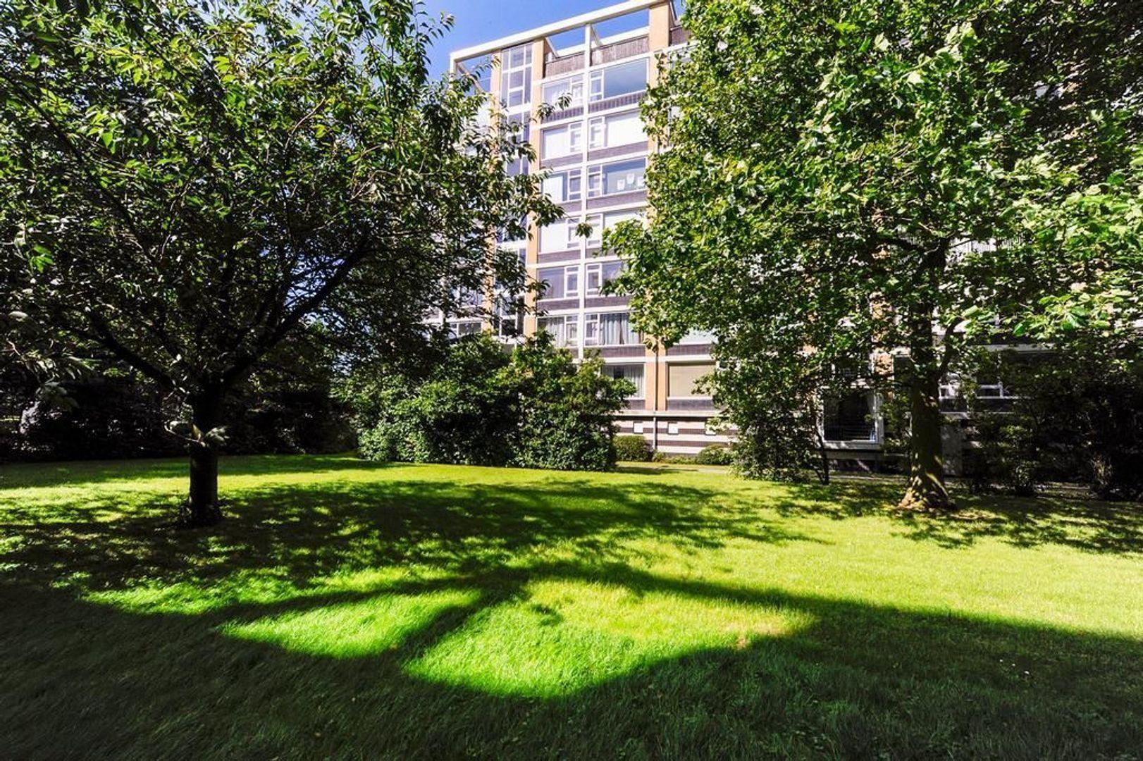 Louis Davidsstraat 285, Den Haag foto-23 blur