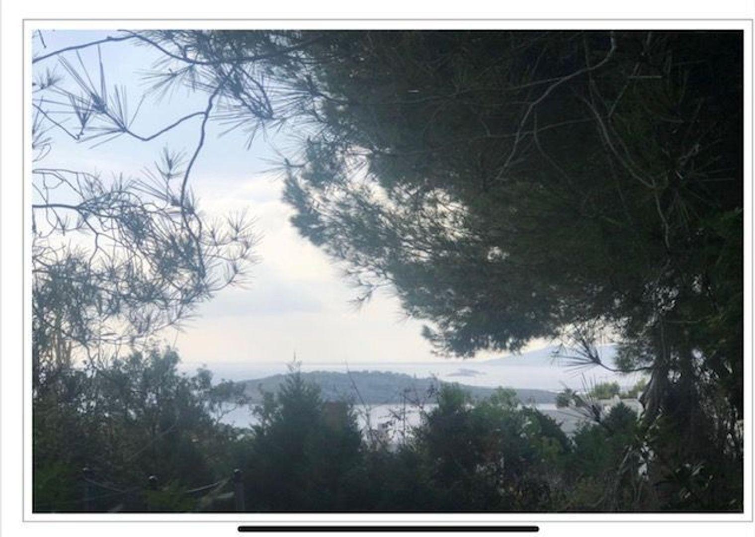 IBIZA talamaca, Ibiza foto-5 blur