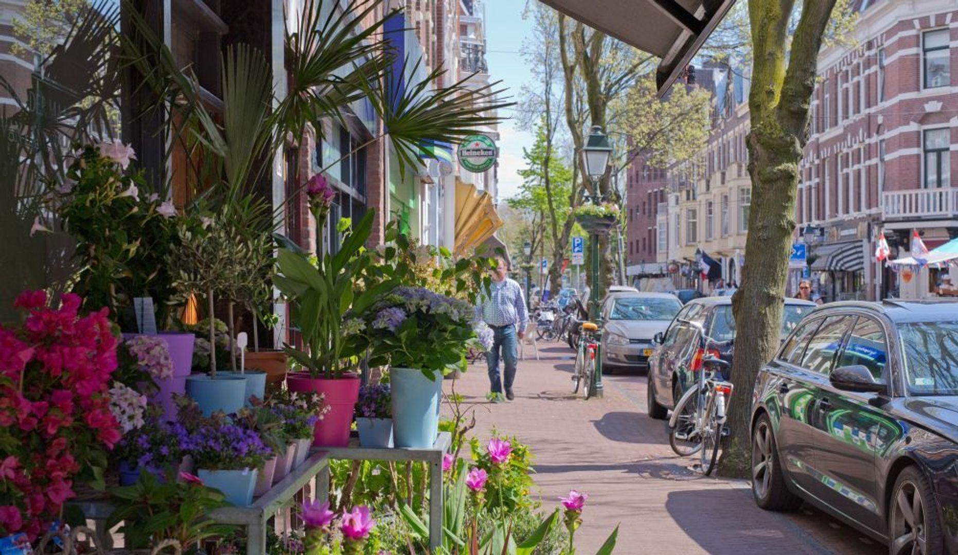 1e Sweelinckstraat 24 b, Den Haag foto-23 blur
