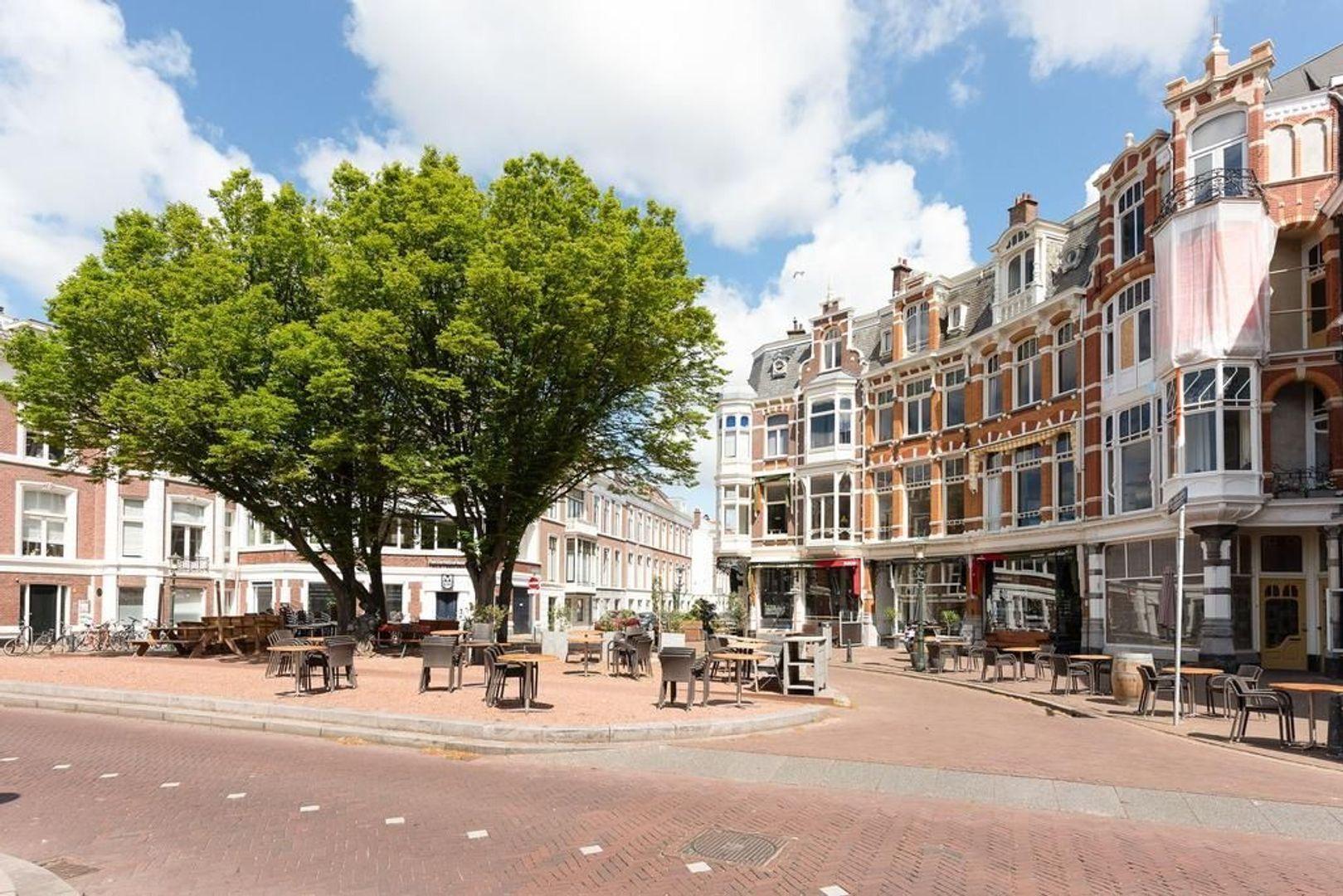 1e Sweelinckstraat 24 b, Den Haag foto-24 blur