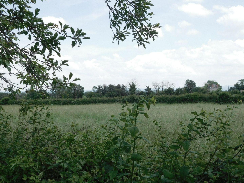 SI1314, Châtillon-en-Bazois foto-4 blur