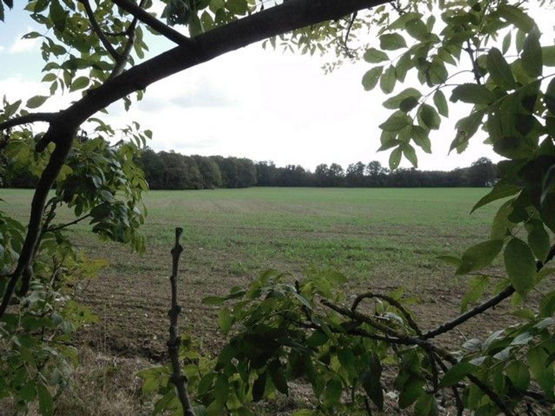 SI1331, La Guerche sur l'Aubois foto-4 blur