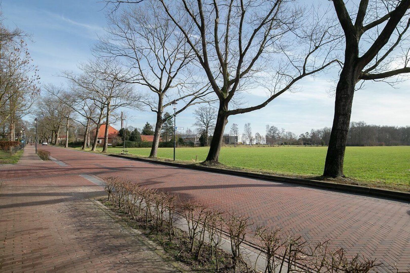 Dijkhuizen 101, Ruinerwold foto-29 blur