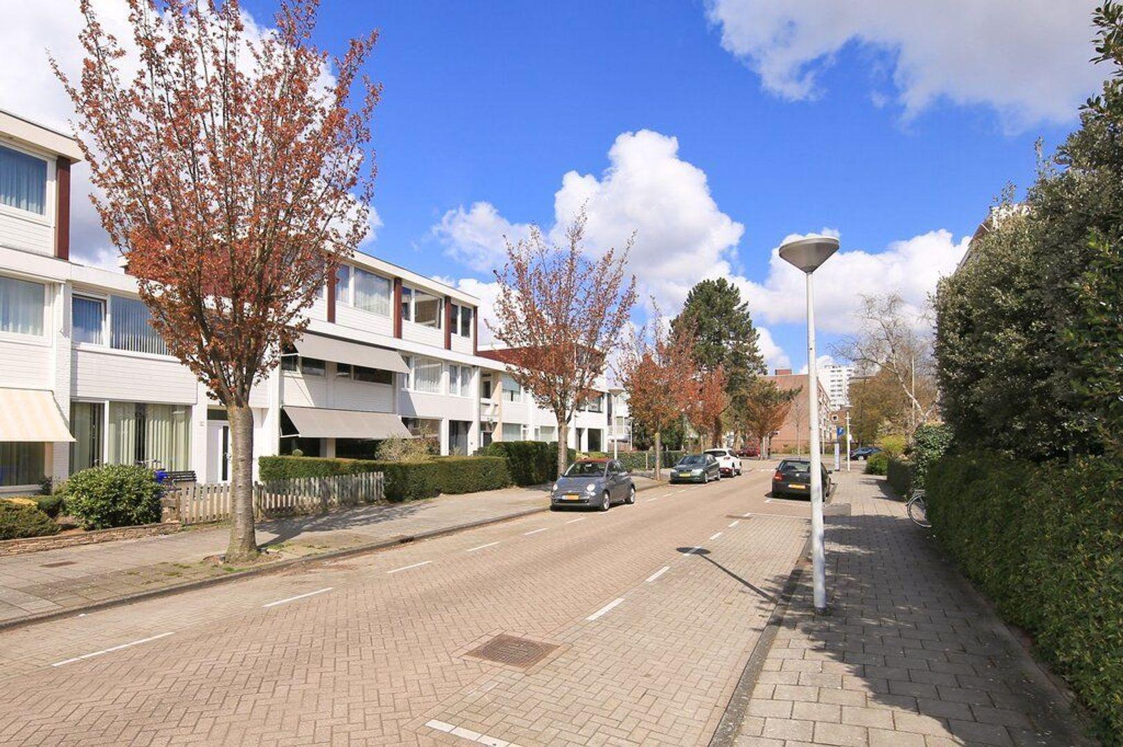 Opveld 10, Amsterdam foto-1 blur
