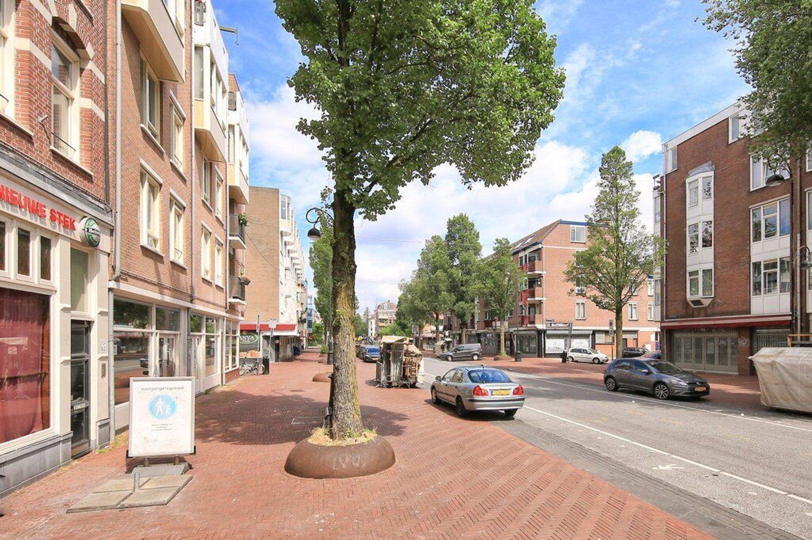 Reinwardtstraat 244, Amsterdam foto-23 blur