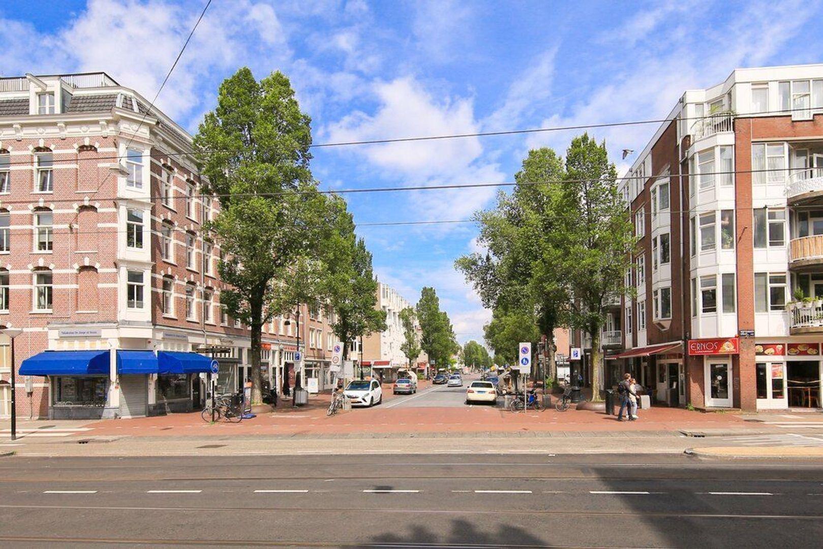 Reinwardtstraat 244, Amsterdam foto-24 blur