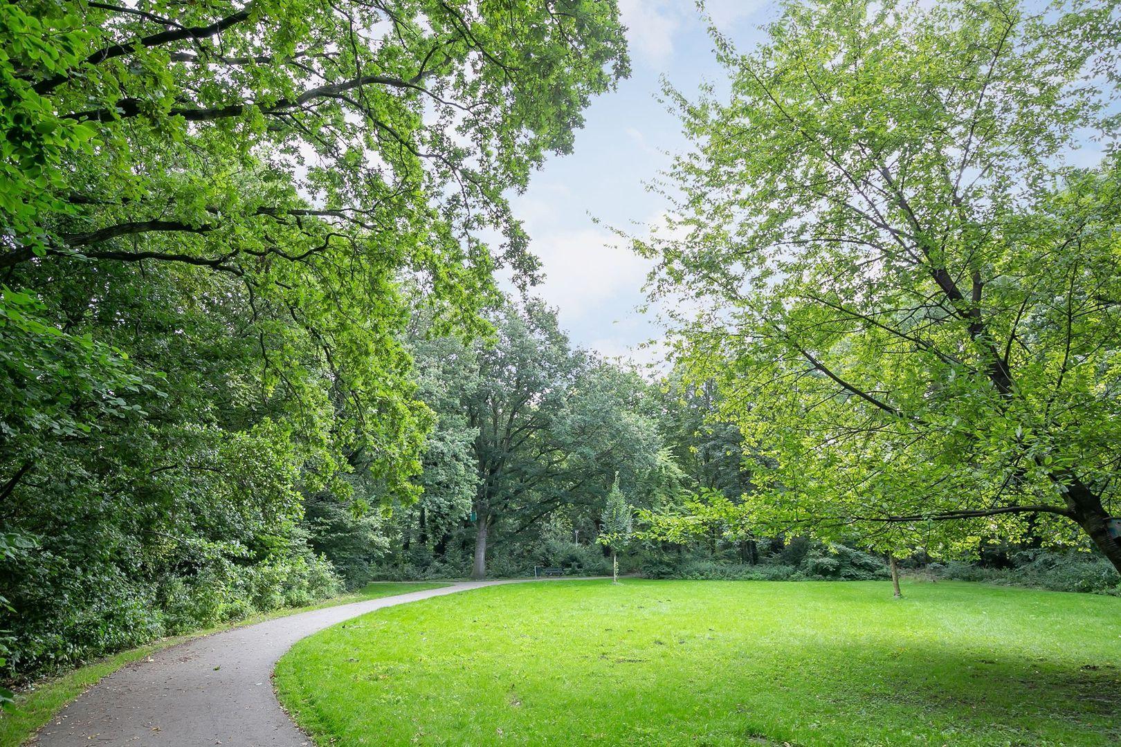 Julianalaan 84 C, Schiedam foto-23 blur