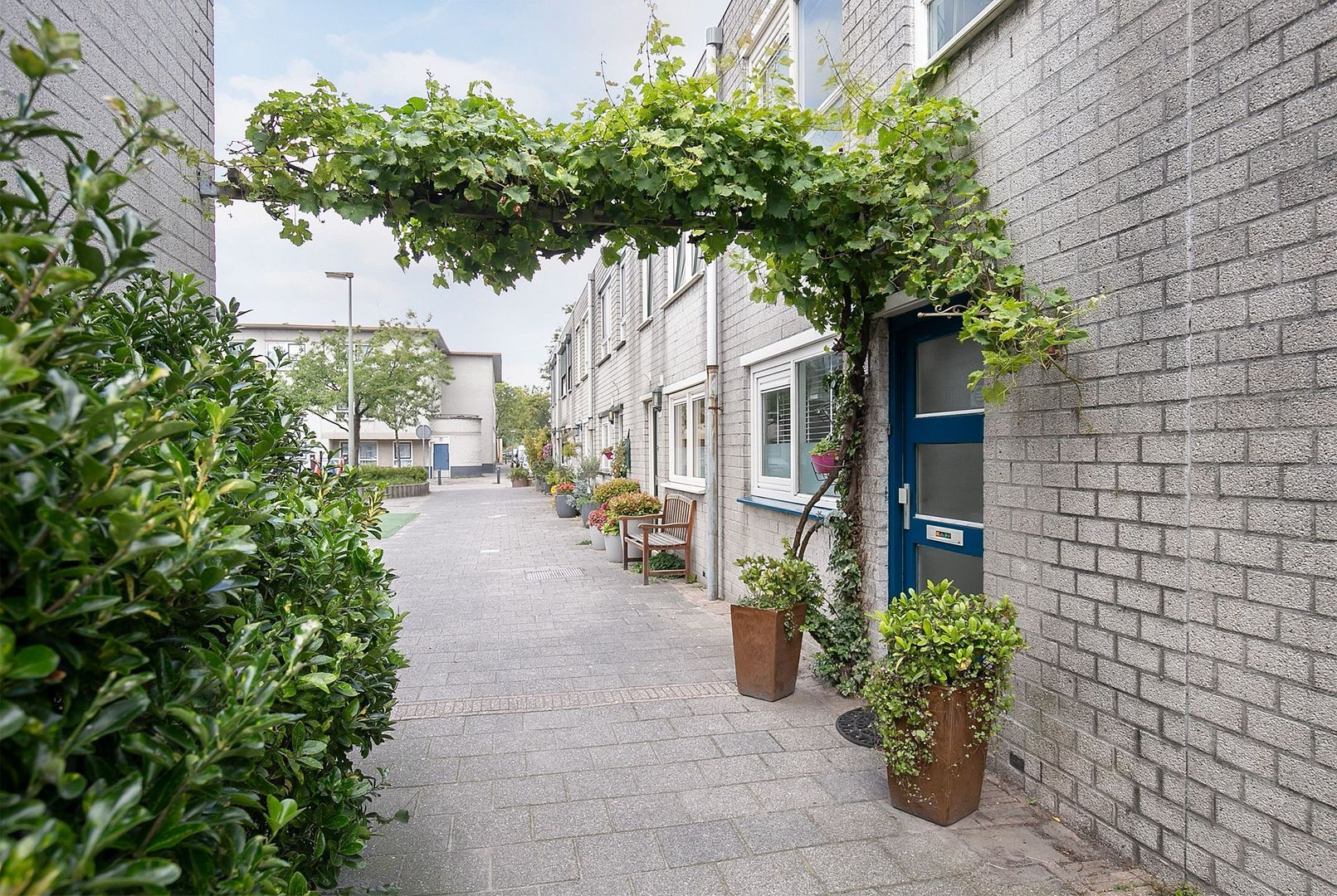 Grevelingenstraat 44, Schiedam foto-2 blur