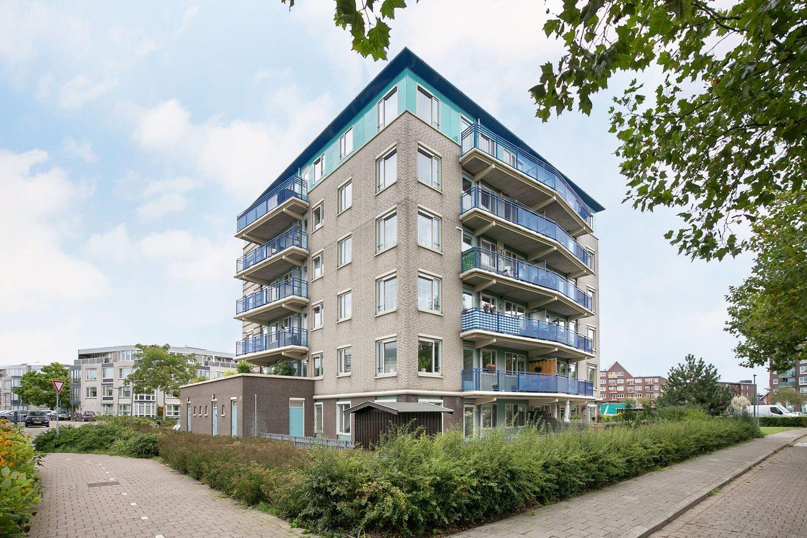 Lavendelveld 12, Schiedam foto-0 blur