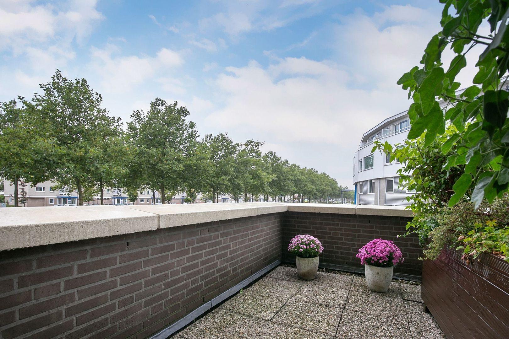 Lavendelveld 12, Schiedam foto-29 blur