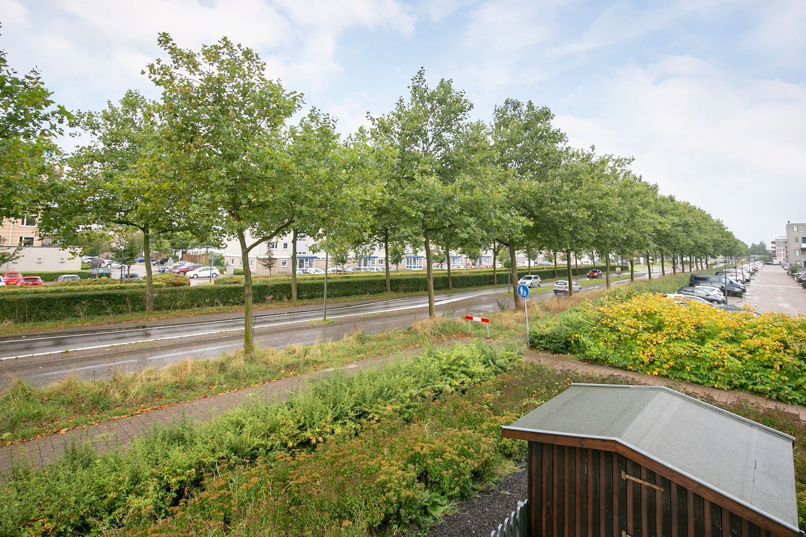Lavendelveld 12, Schiedam foto-32 blur