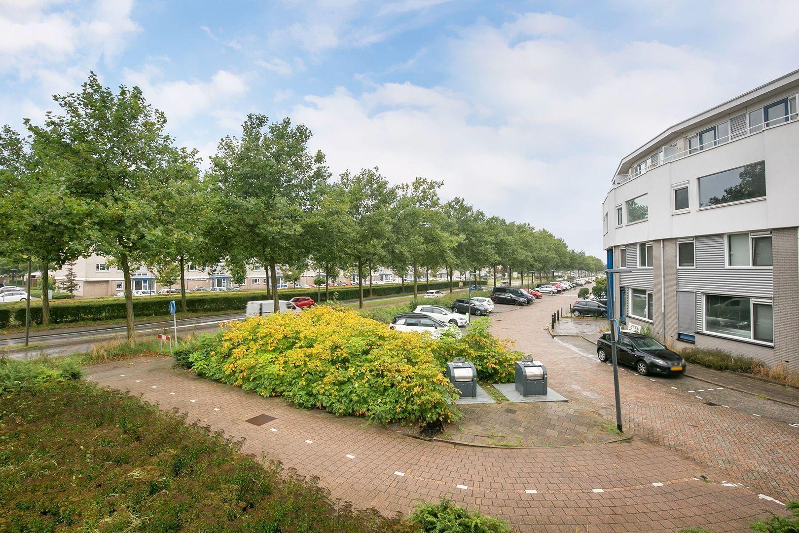 Lavendelveld 12, Schiedam foto-33 blur