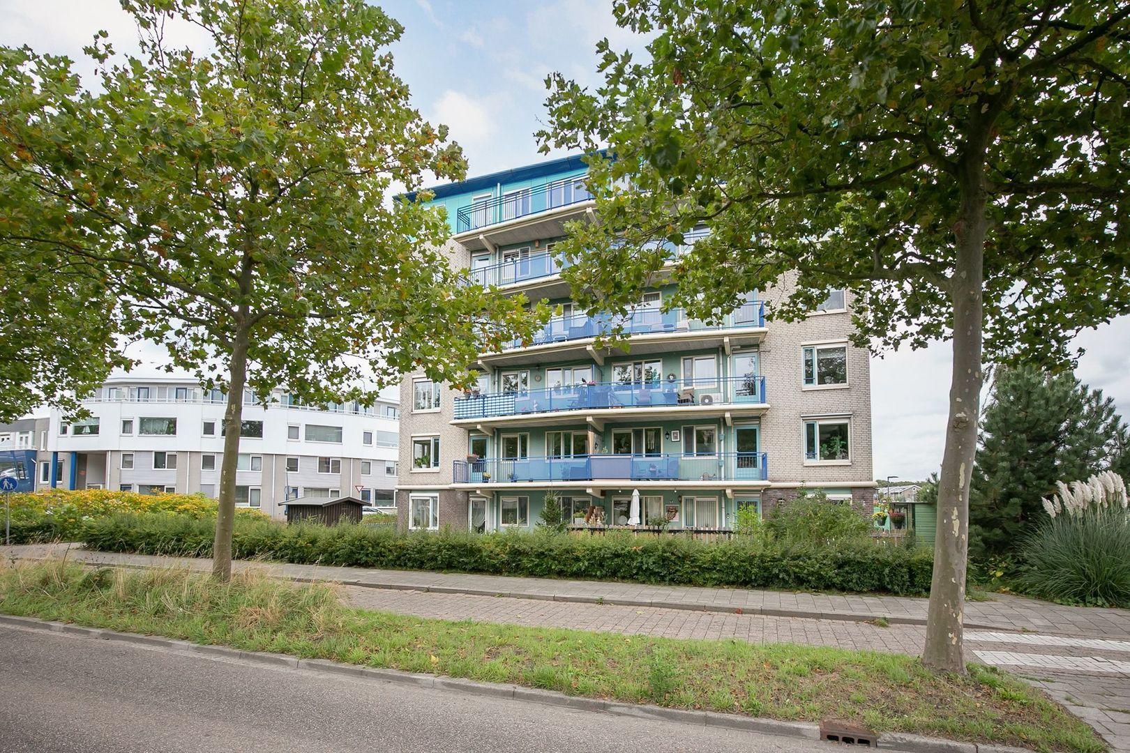 Lavendelveld 12, Schiedam foto-35 blur