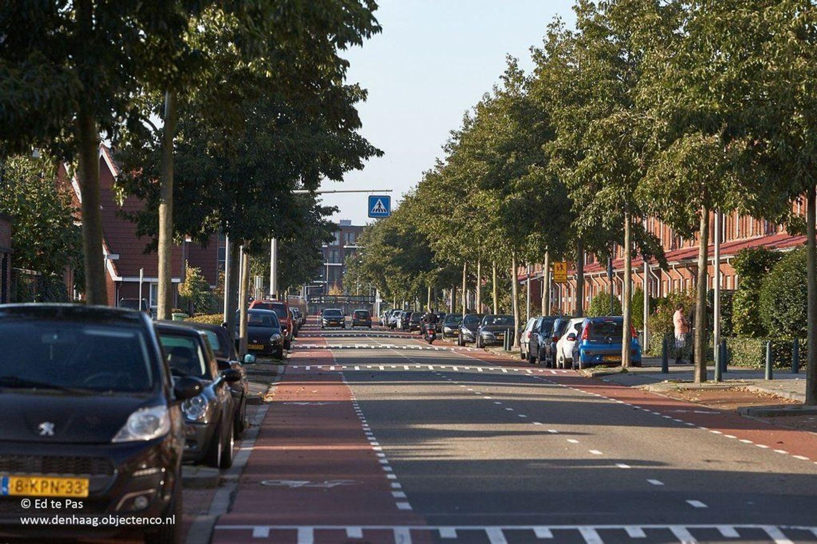 Meijepolderstraat, Den Haag foto-26 blur