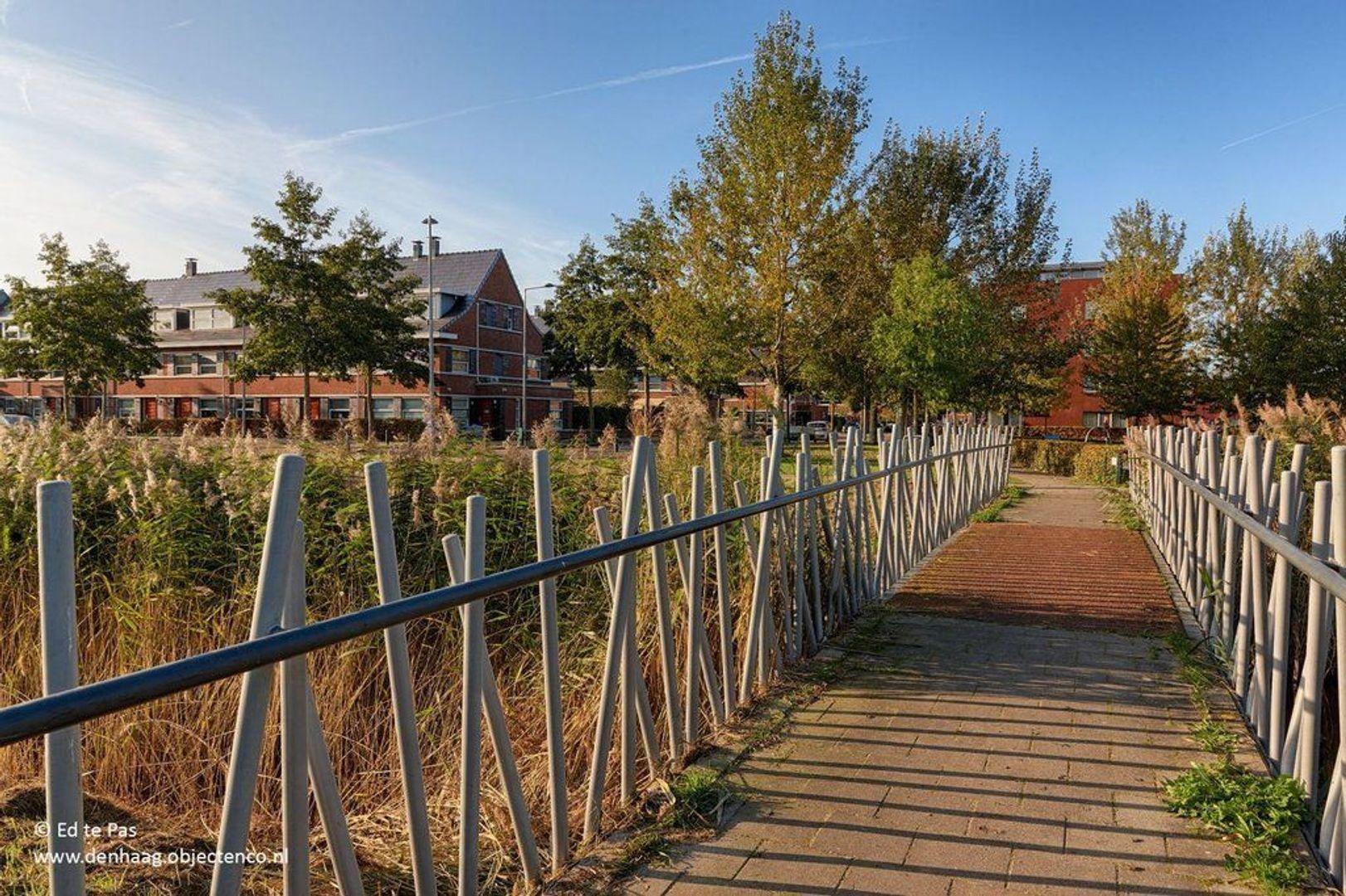 Meijepolderstraat, Den Haag foto-29 blur
