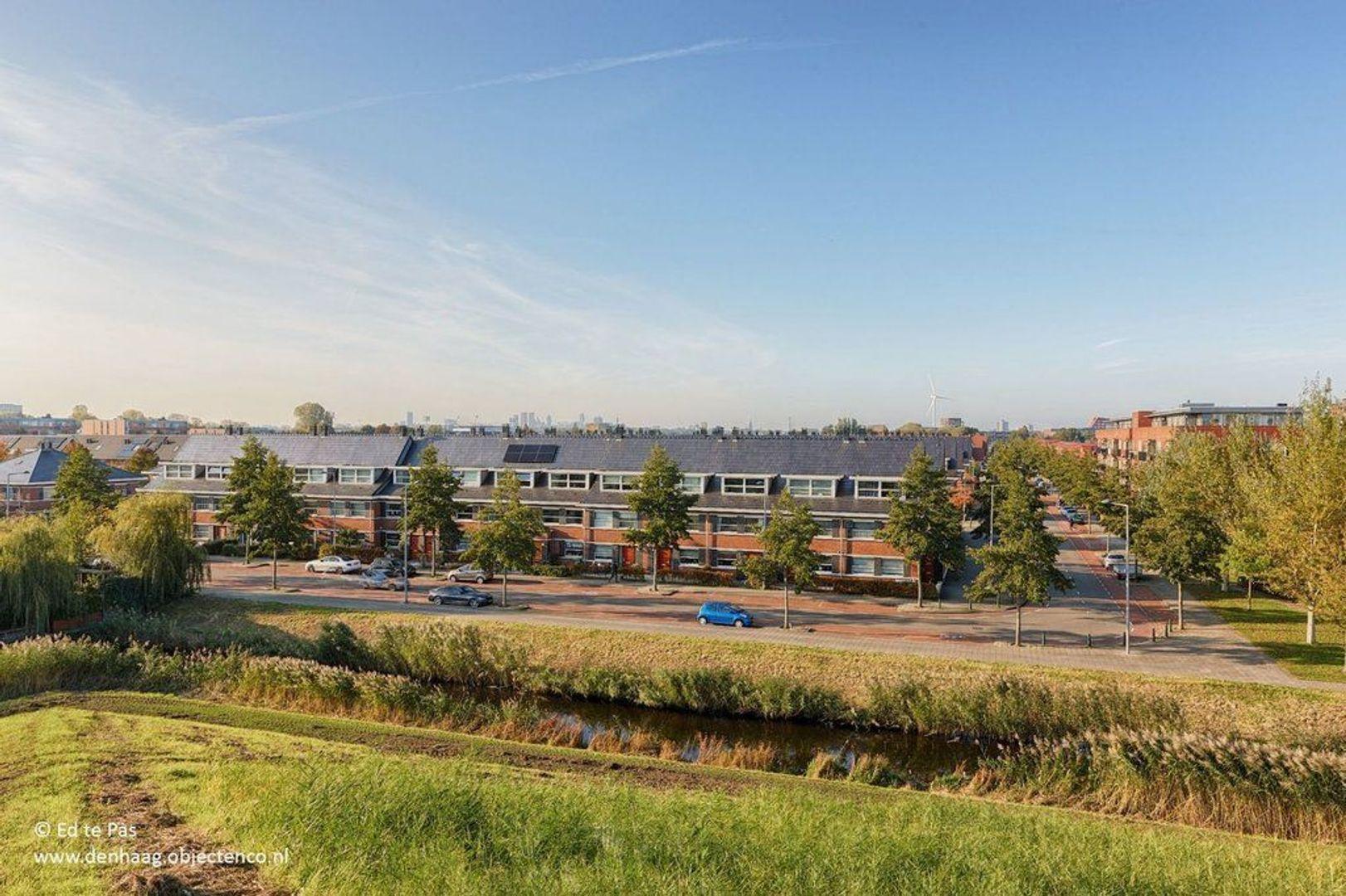 Meijepolderstraat, Den Haag foto-30 blur