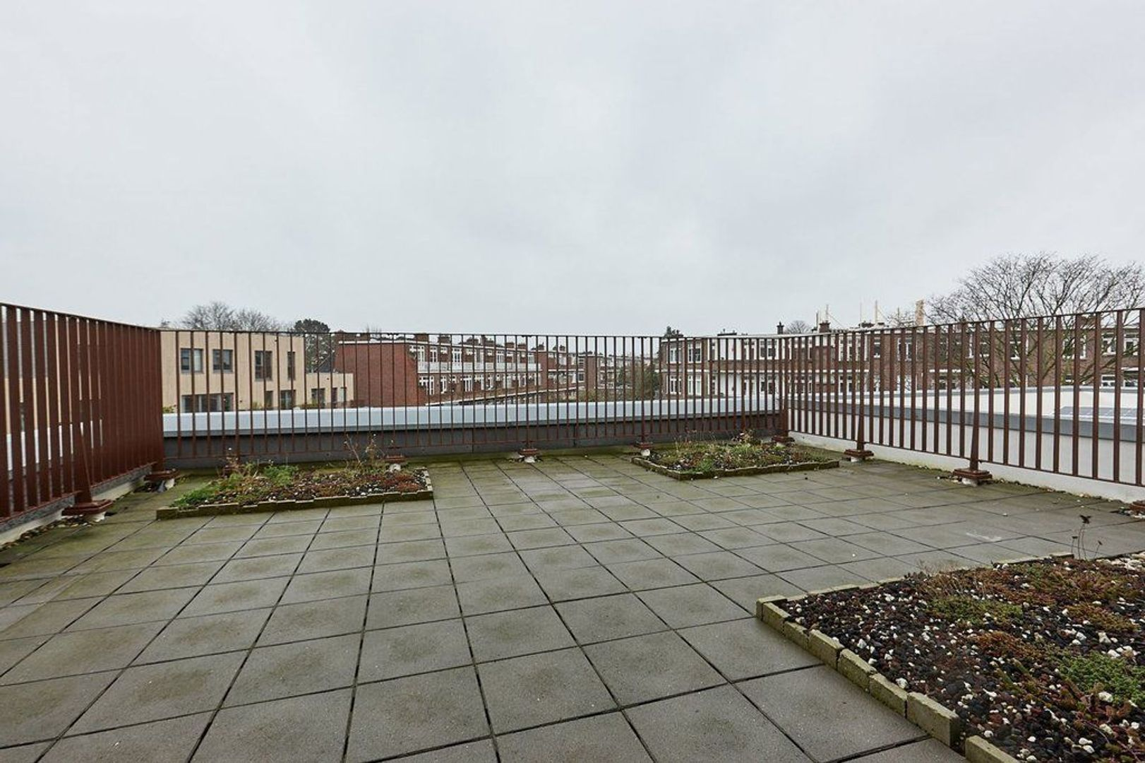 Limoenhof, Den Haag foto-23 blur