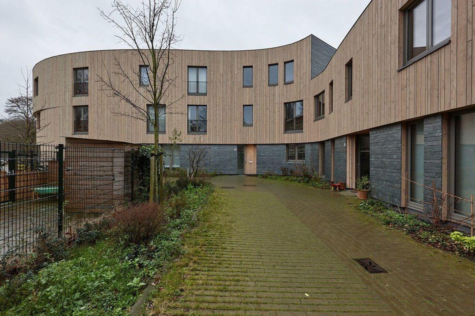 Limoenhof, Den Haag foto-24 blur
