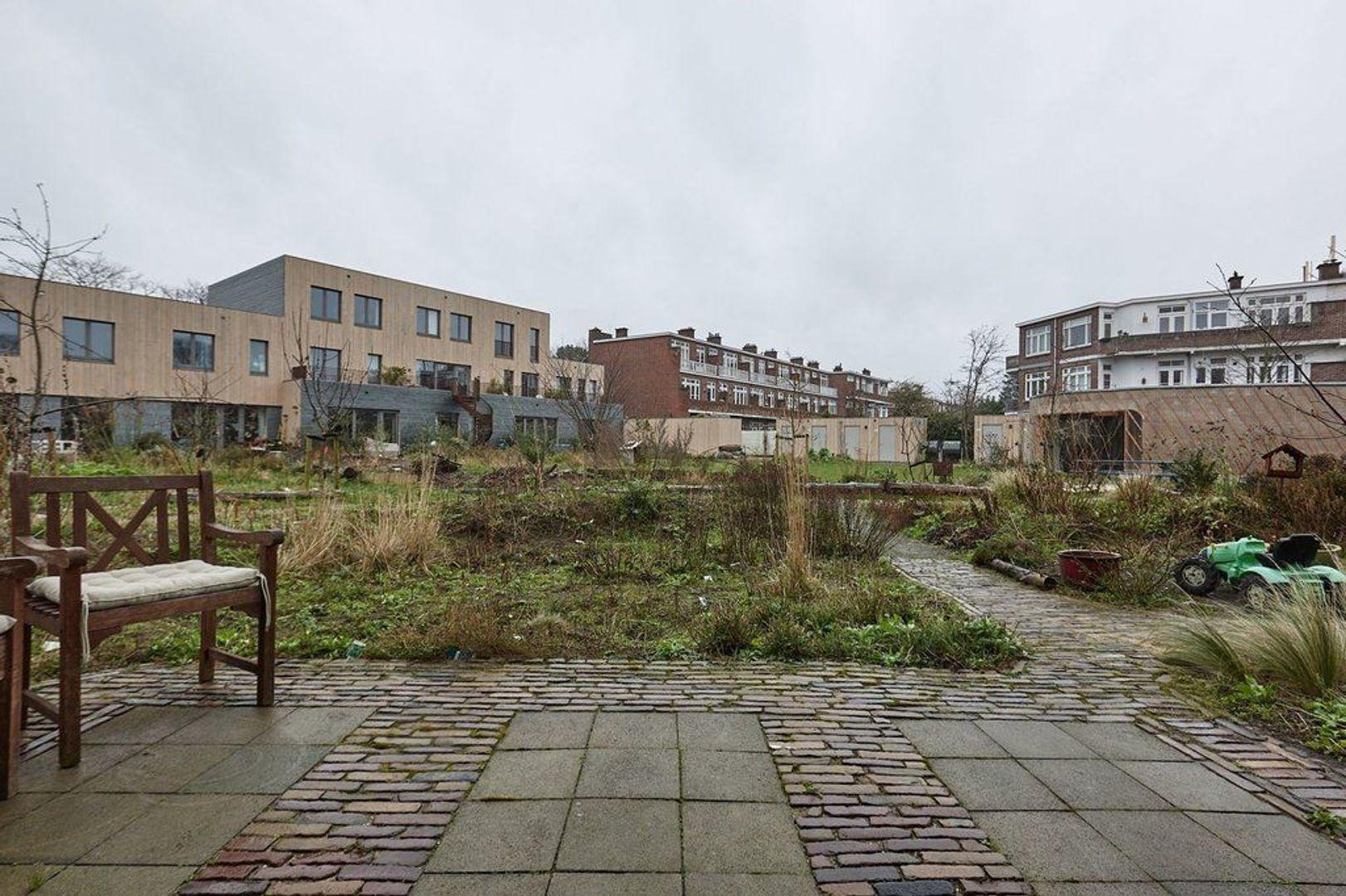Limoenhof, Den Haag foto-25 blur