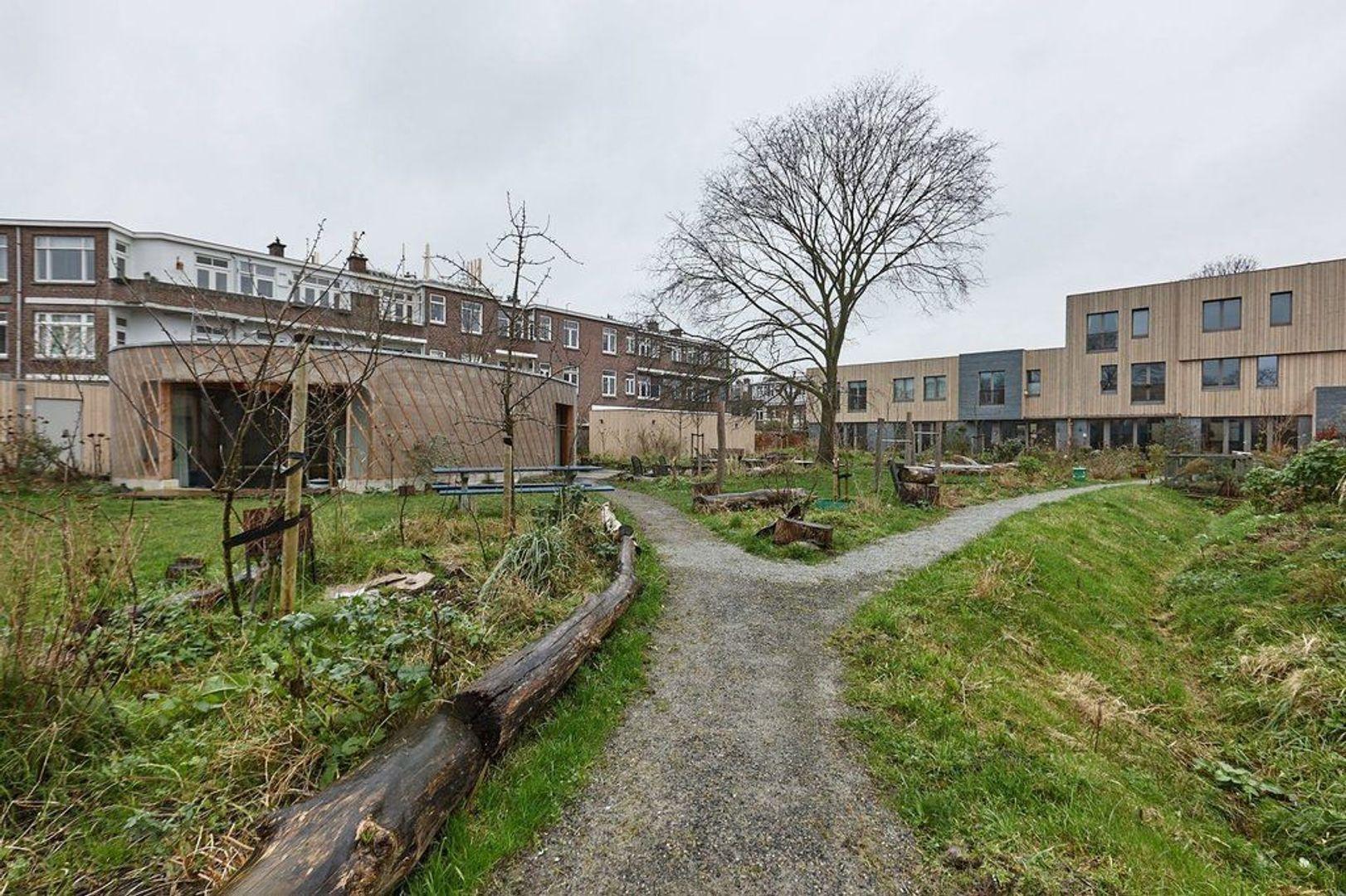 Limoenhof, Den Haag foto-27 blur