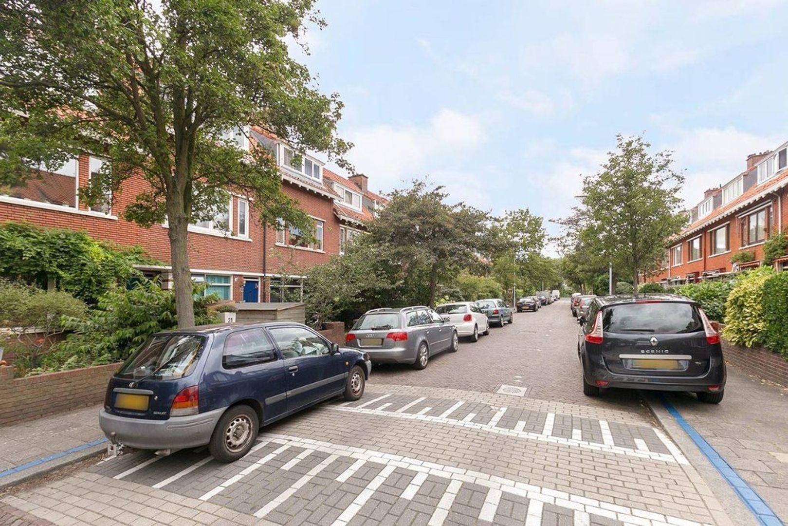 van der Palmstraat, Voorburg foto-15 blur