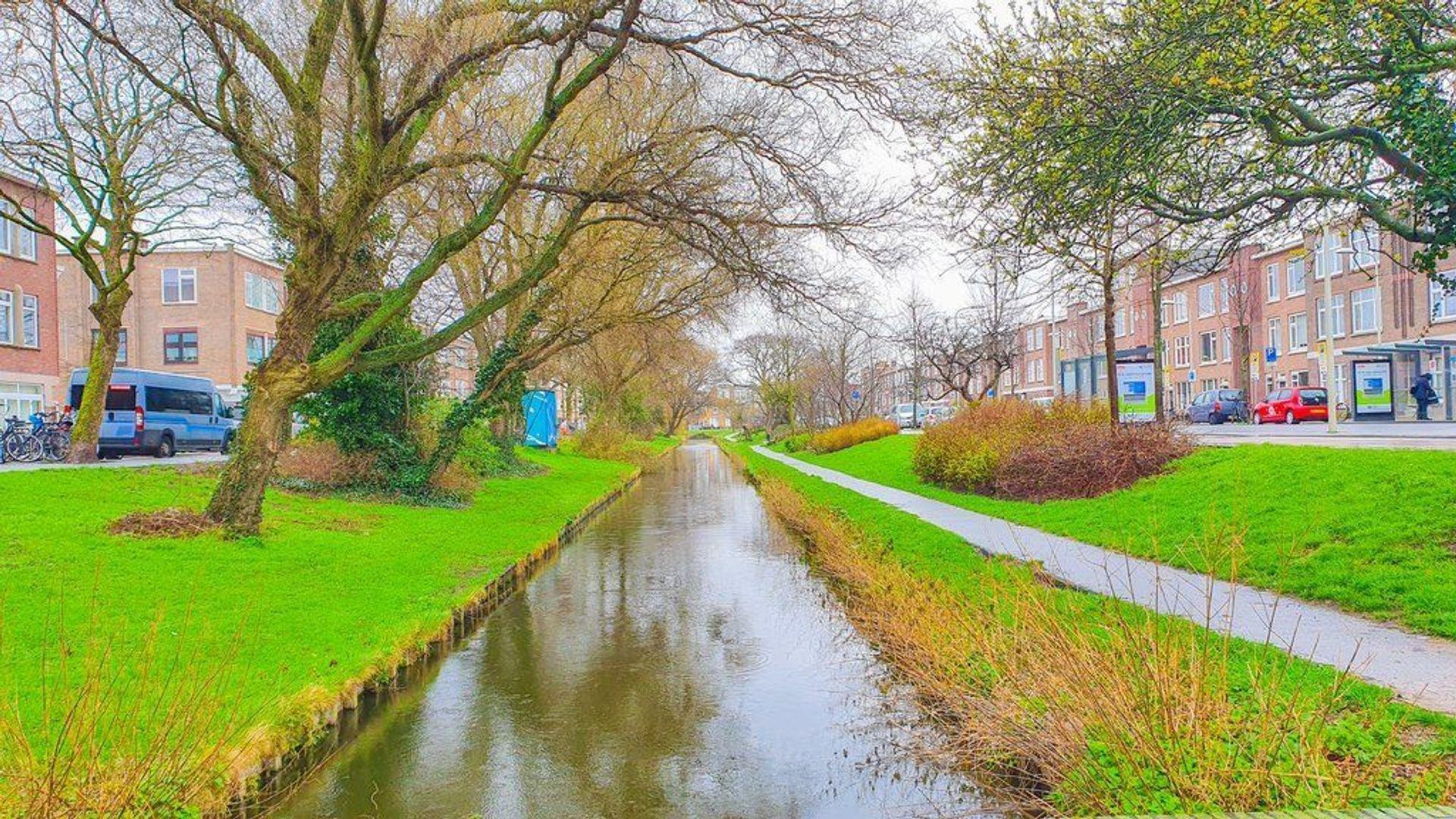 Kamperfoeliestraat, Den Haag foto-25 blur