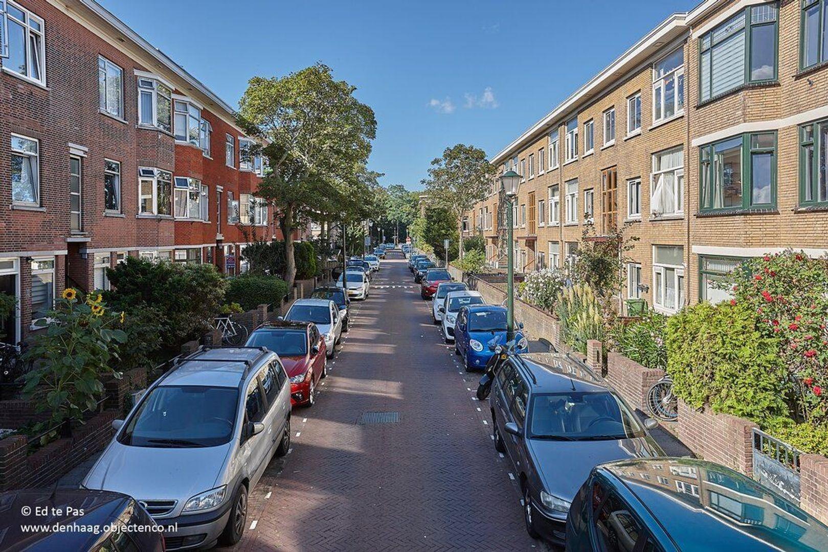 Okkernootstraat, Den Haag foto-28 blur