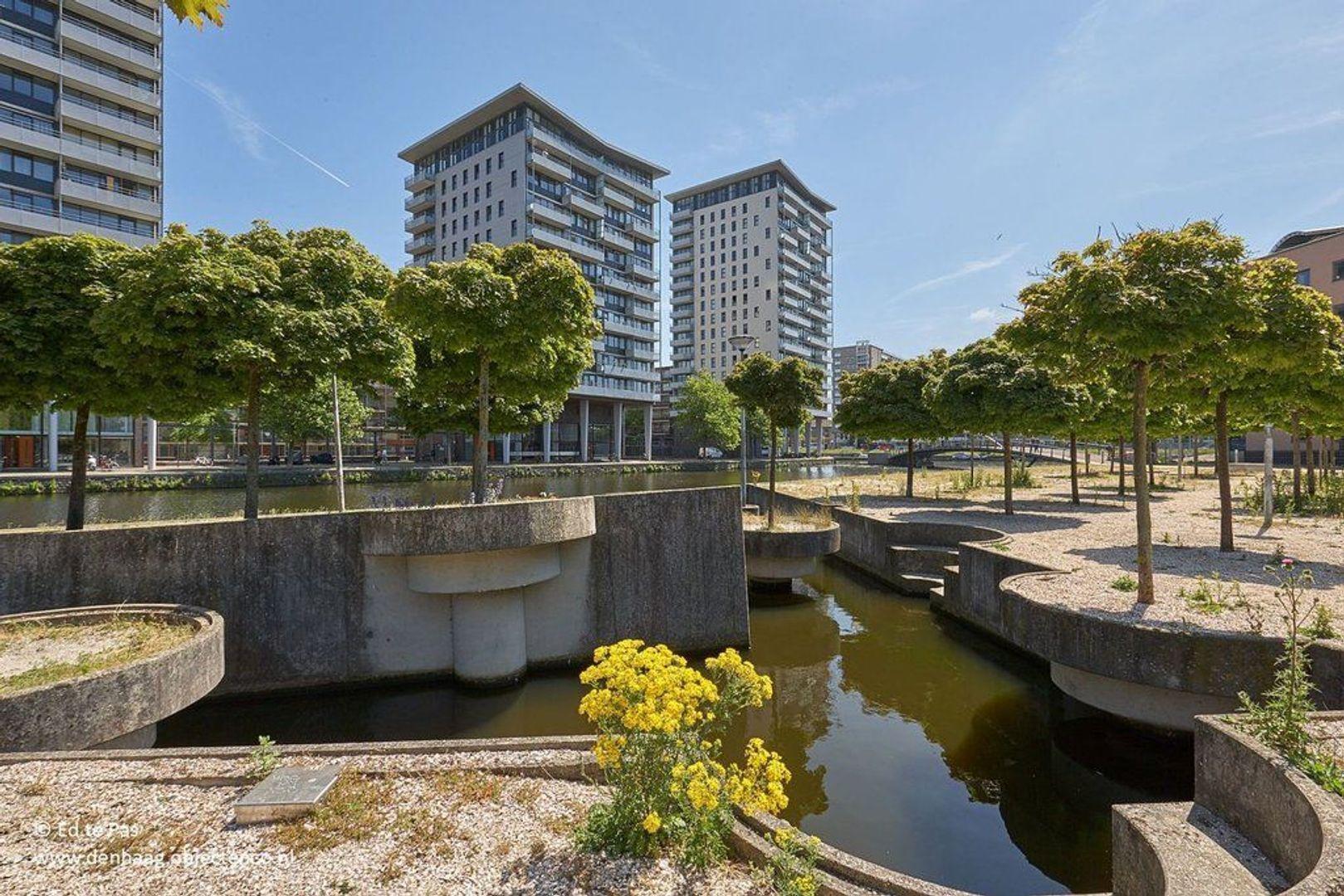 Fijnjekade, Den Haag foto-23 blur