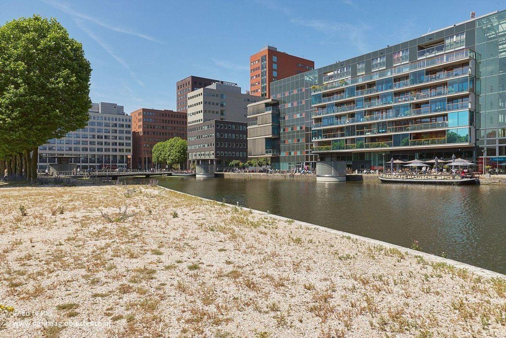 Fijnjekade, Den Haag foto-27 blur
