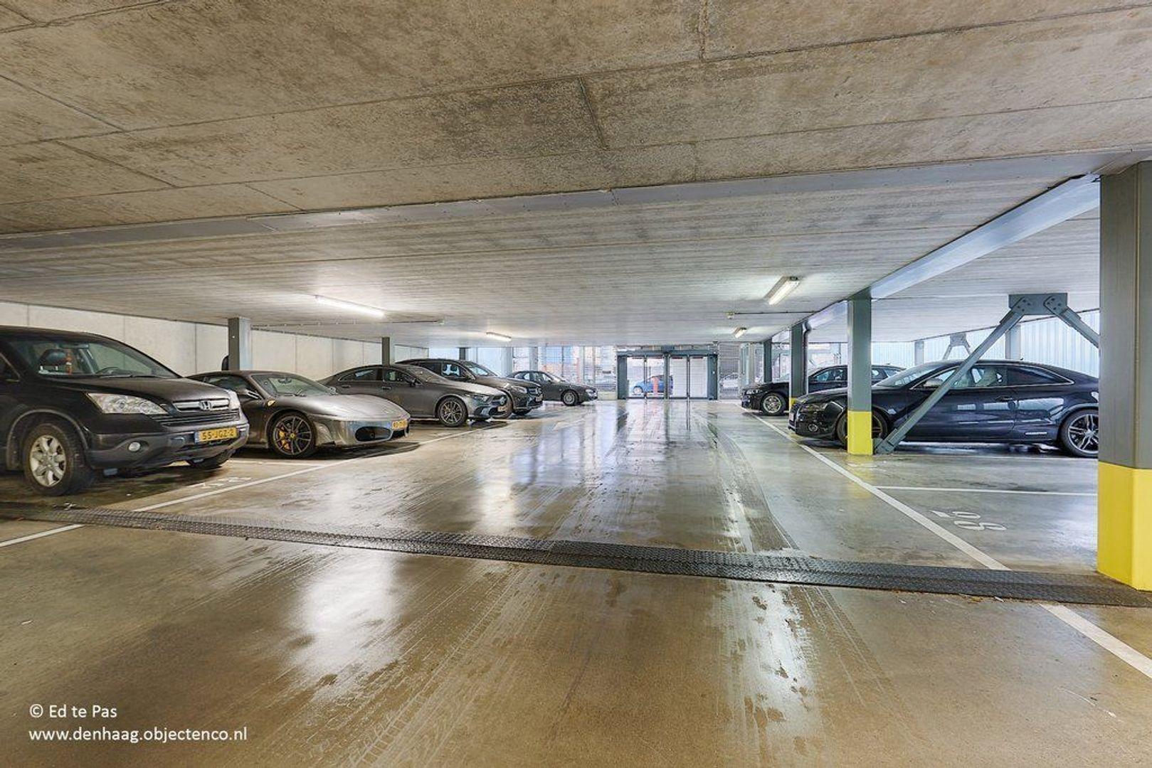 Prins Willem-Alexanderweg, Den Haag foto-26 blur
