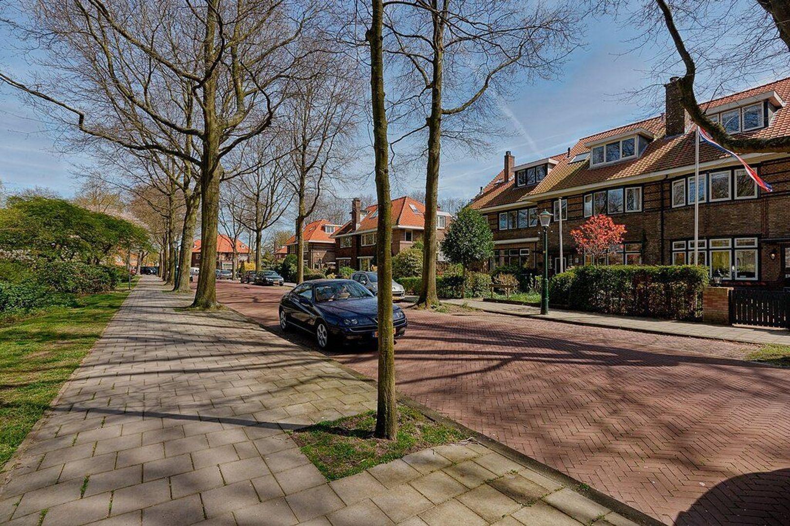 Burchtplein, Wassenaar foto-2 blur