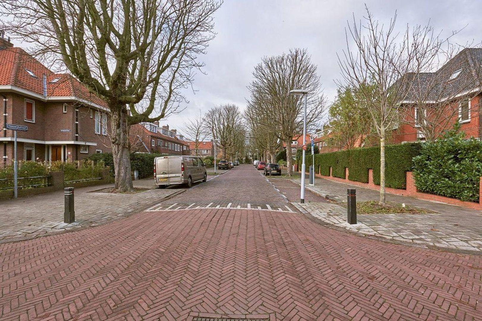 Paradijsstraat, Voorburg foto-28 blur