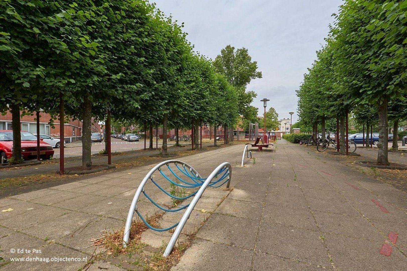 van Gaesbekestraat, Voorburg foto-22 blur