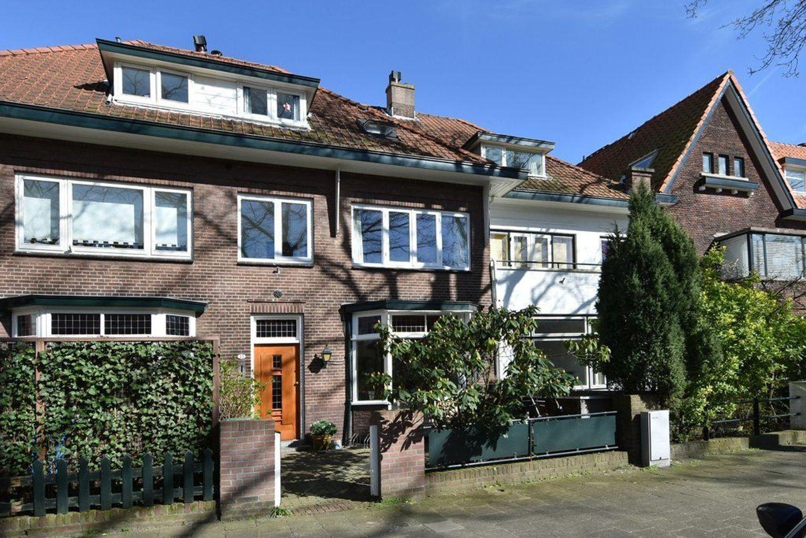 Groen van Prinstererlaan, Voorburg foto-43 blur
