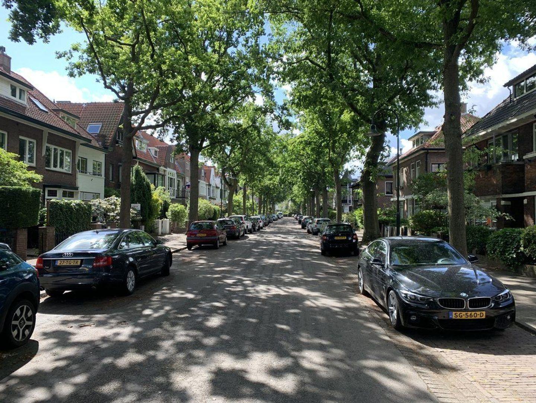 Groen van Prinstererlaan, Voorburg foto-46 blur