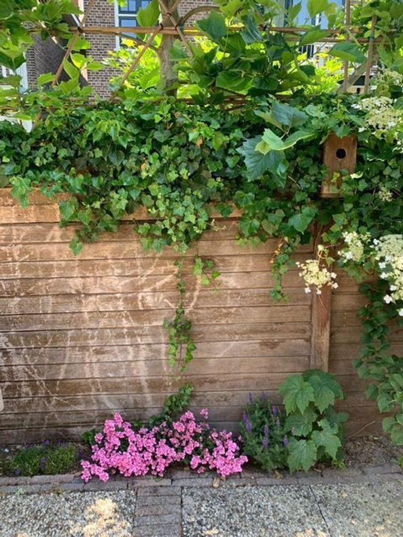 Groen van Prinstererlaan, Voorburg foto-20 blur
