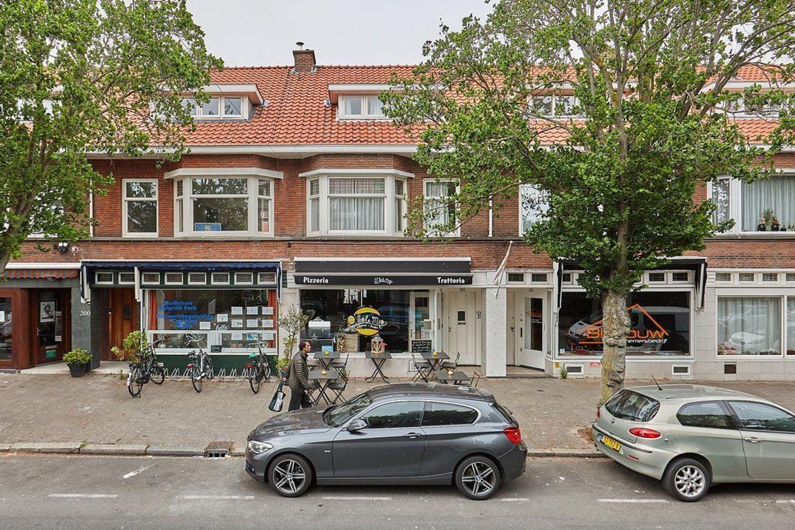 Stevinstraat, Den Haag foto-23 blur