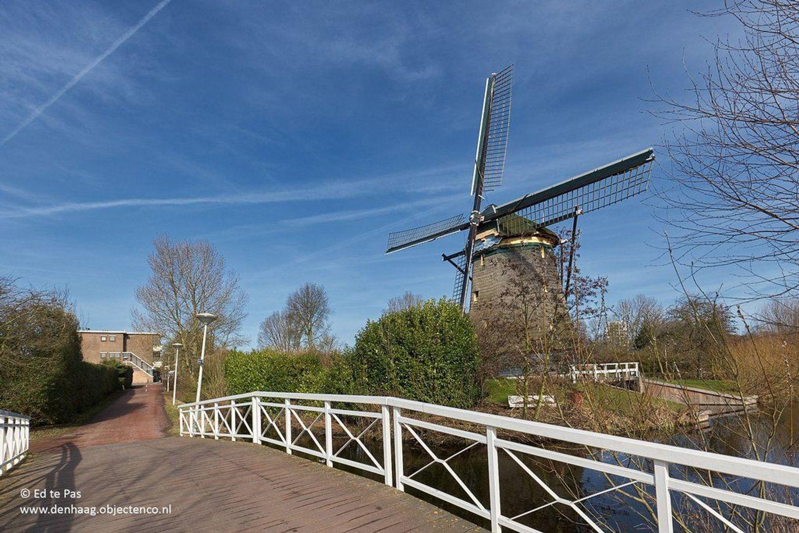 Van Heutszstraat, Den Haag foto-30 blur