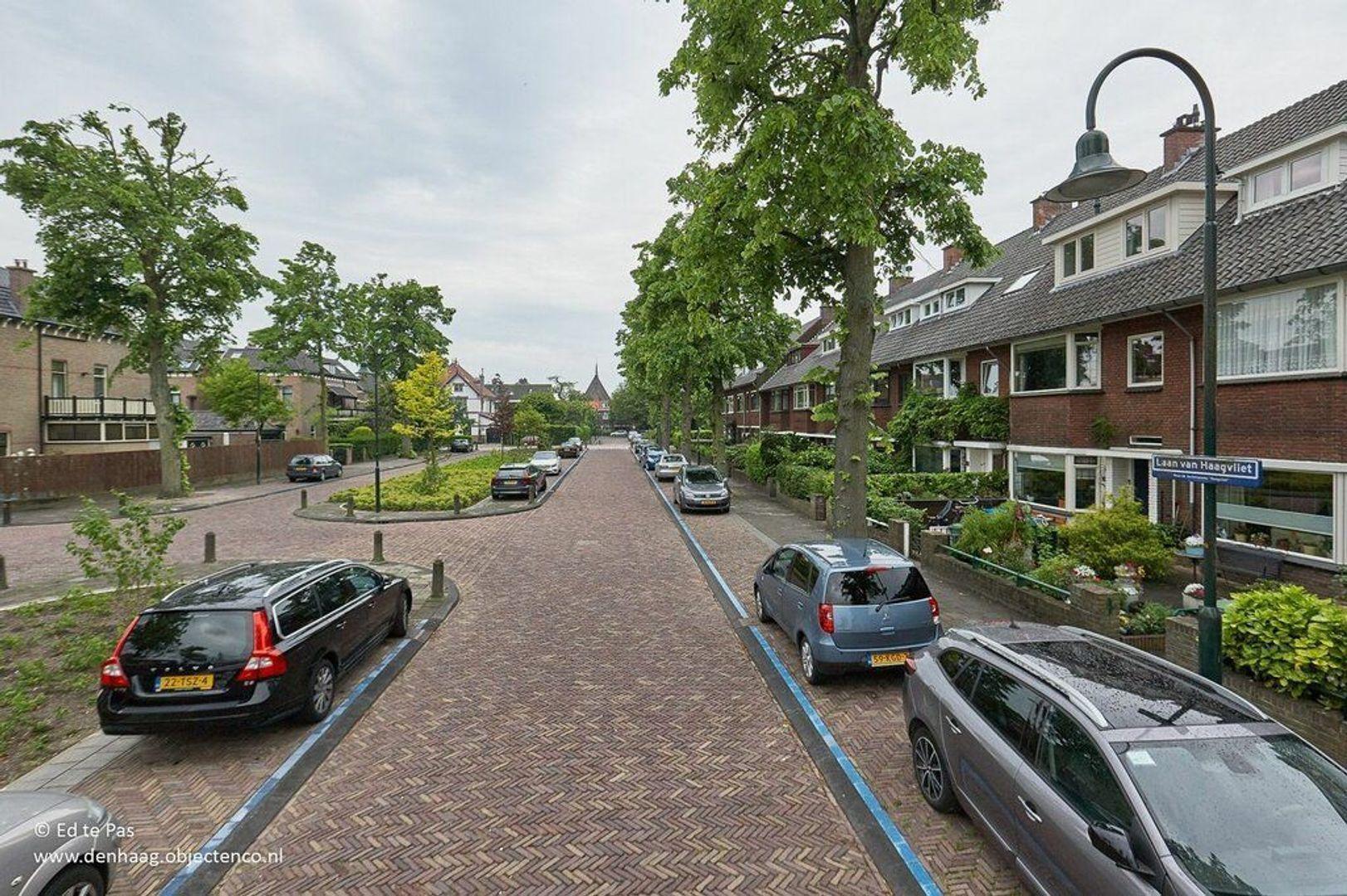 Laan van Haagvliet, Voorburg foto-27 blur
