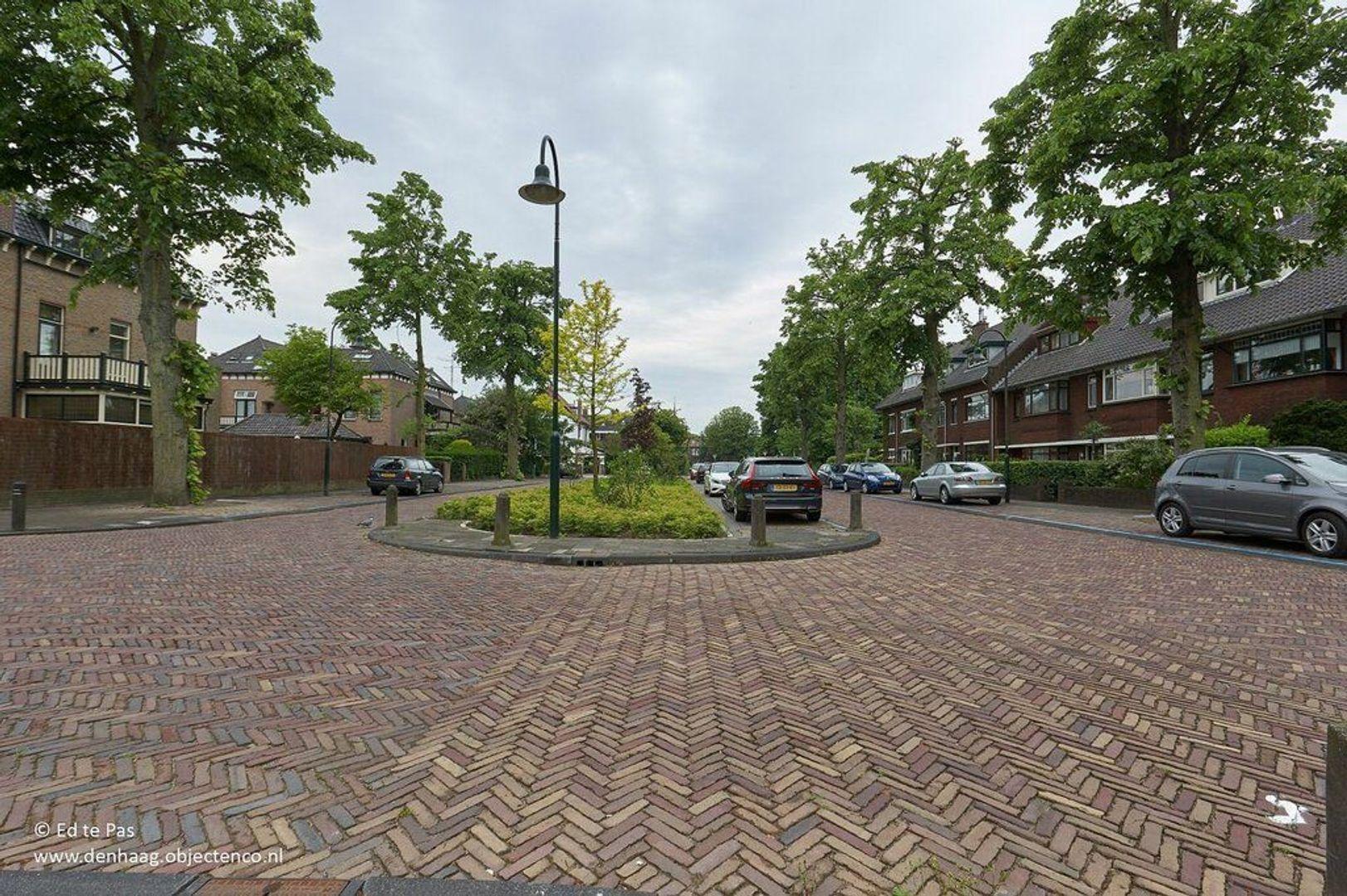 Laan van Haagvliet, Voorburg foto-28 blur