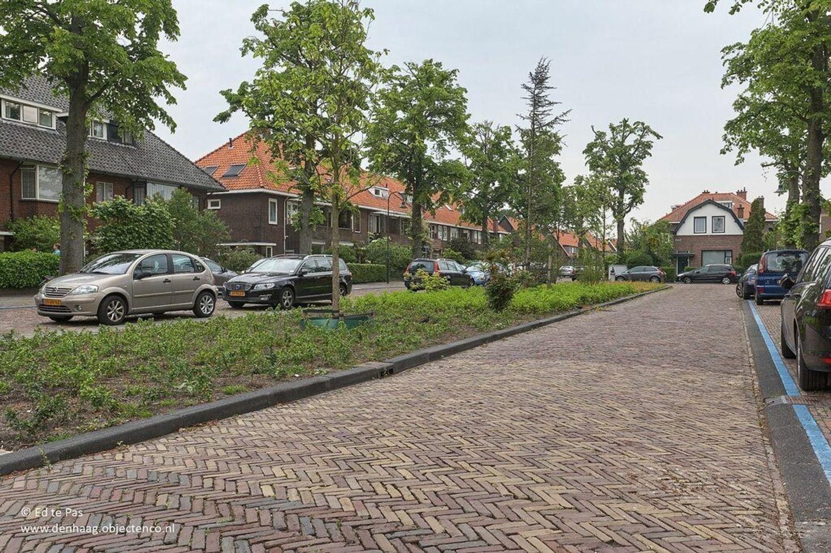 Laan van Haagvliet, Voorburg foto-29 blur