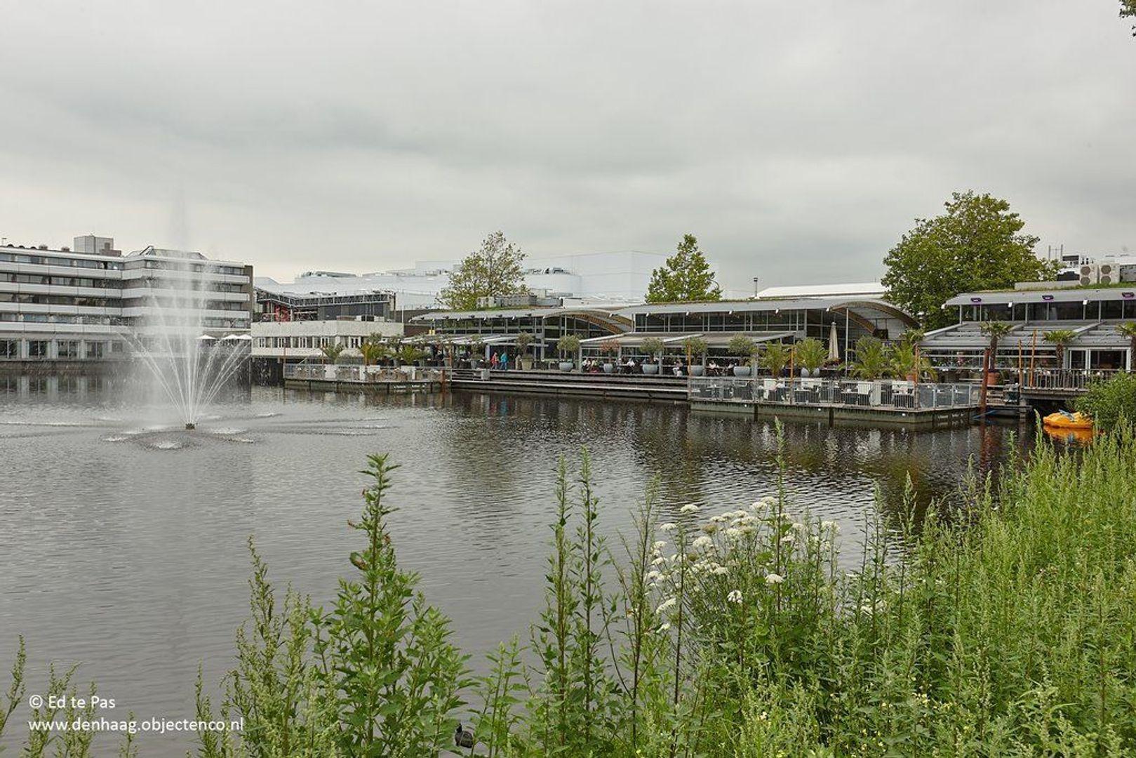 Schout Van Eijklaan, Leidschendam foto-30 blur