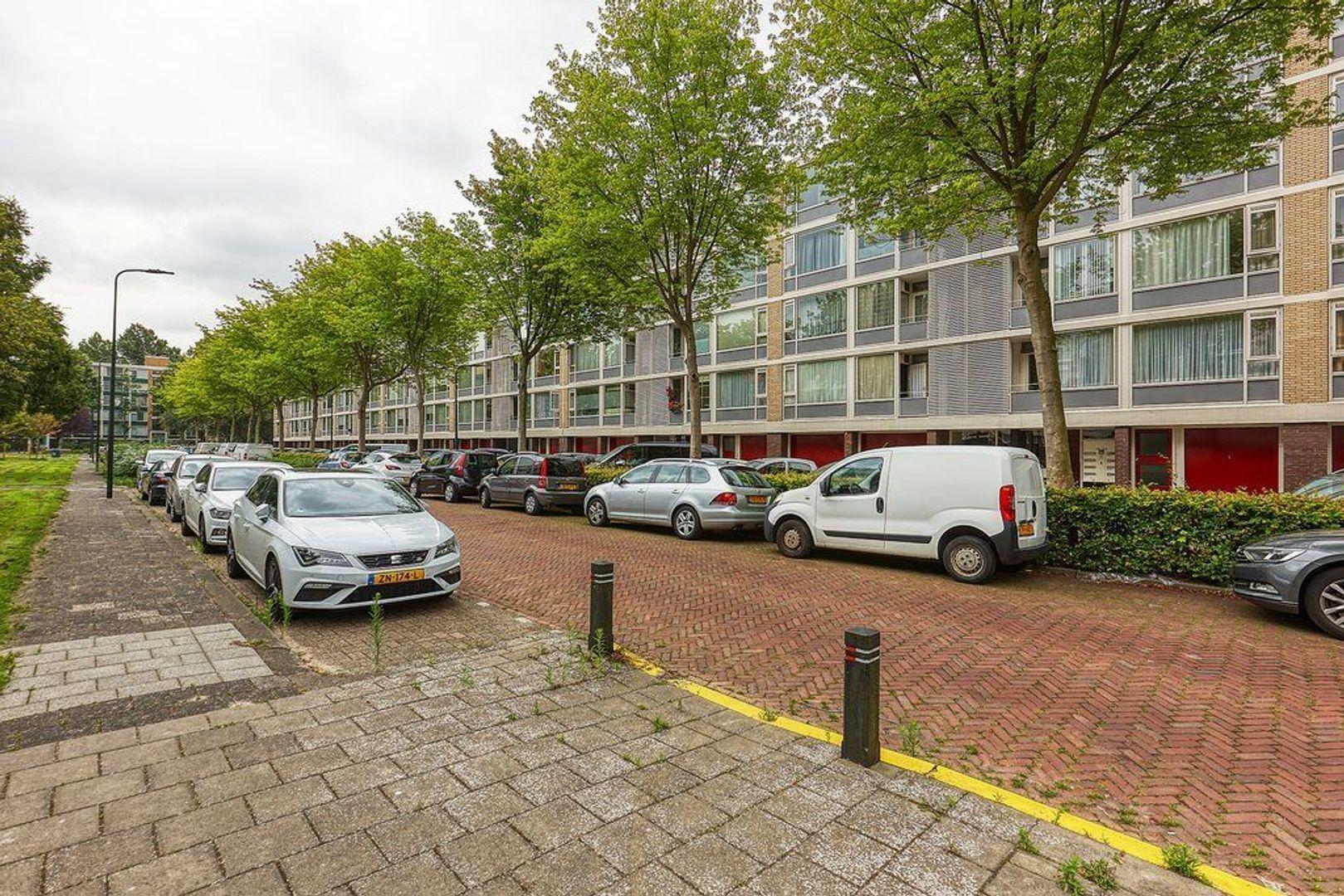 Schout Van Eijklaan, Leidschendam foto-22 blur