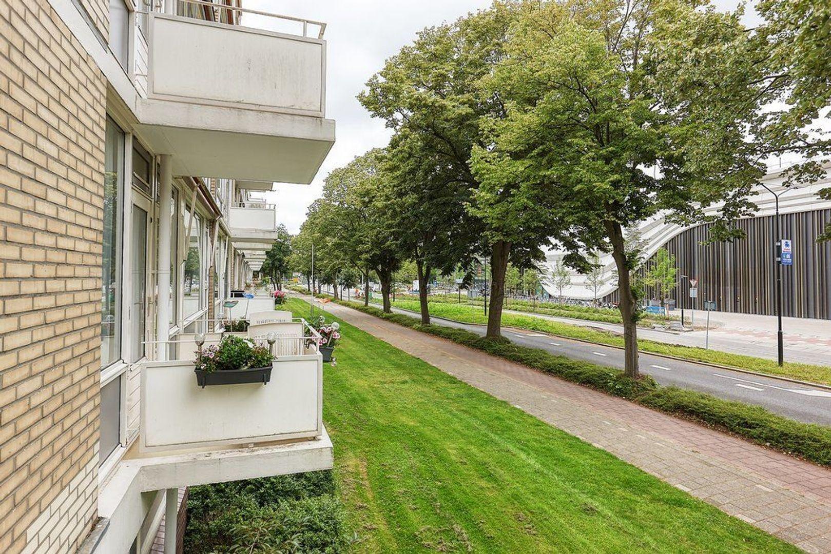 Schout Van Eijklaan, Leidschendam foto-19 blur